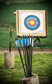 Arrows and a target in a field