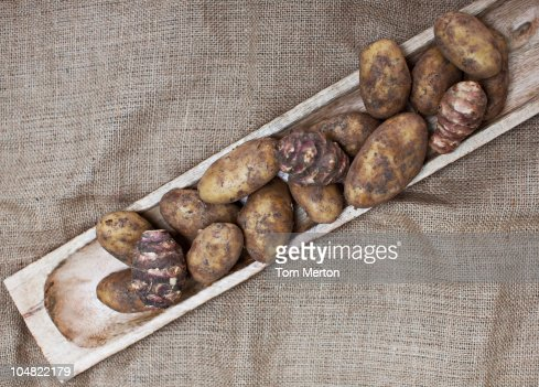 Taro root in wooden dish : Stock Photo