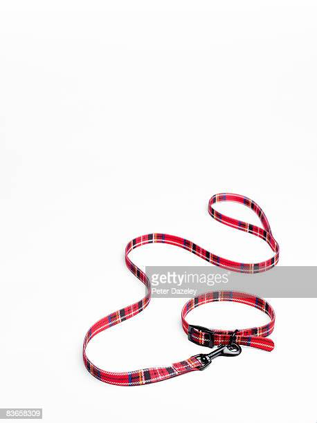 Tartan dog collar and lead