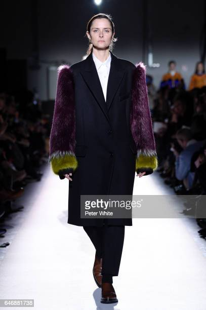 Tasha Tilberg walks the runway during the Dries Van Noten show as part of the Paris Fashion Week Womenswear Fall/Winter 2017/2018 on March 1 2017 in...