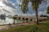 Taskopru stone bridge in Adana,Turkey