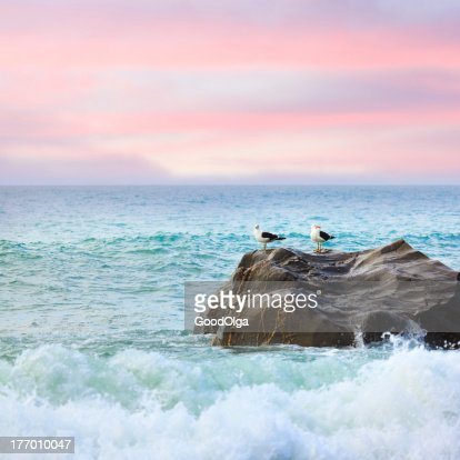 Tasman sea : Stock Photo