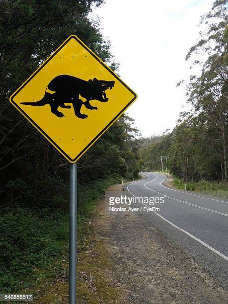 Tasmanian Devil Road Sign By Road In Forest