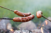 Tasty sausage prepared on the campfire. A holiday meal prepared in the open air. Season of the spring.