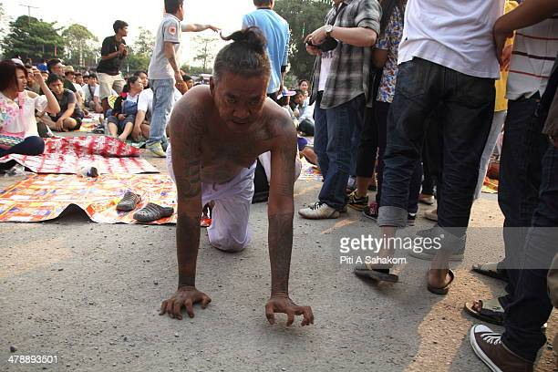 A tattooed Thai devotee enters into a state of trance as a tiger his spirit animal at the Wat Bang Phra tattoo festival in Nakhon Pathom Several...