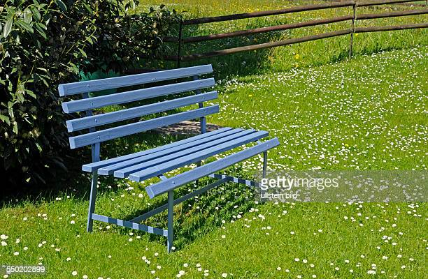 Taubenblaue Gartenbank in Frühlingswiese lädt zum Rasten ein