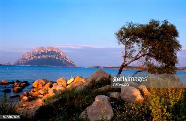 Tavolara island seen from Capo Coda Cavallo Sardinia Italy