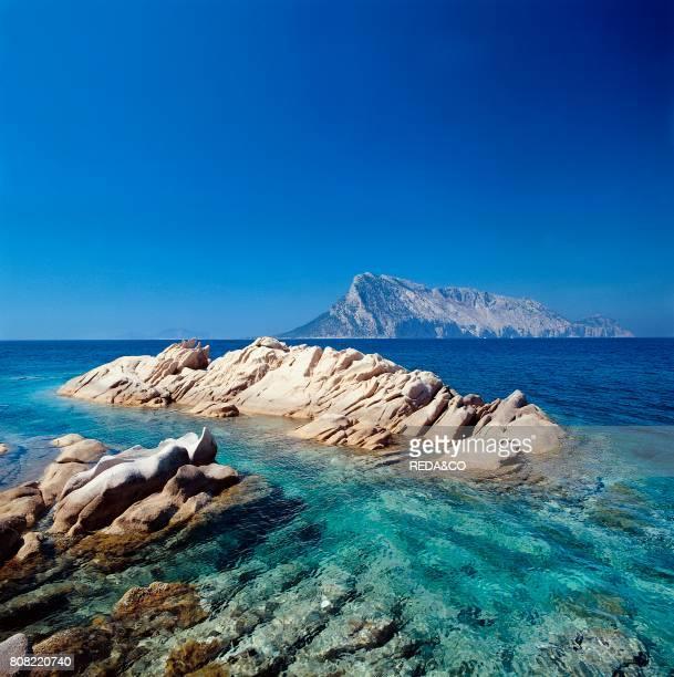 Tavolara vista da Punta Molara San Teodoro Provincia Olbia e Tempio Sardinia Italy Europe
