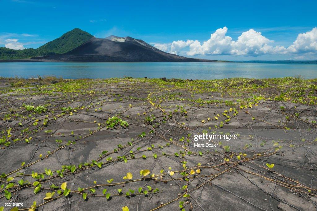Tavurvur volcano in Papua New Guinea