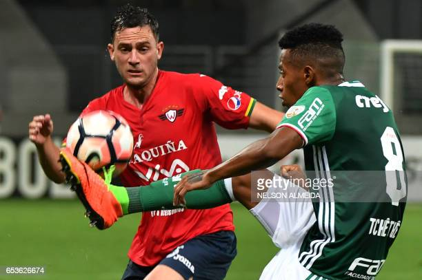 Tche Tche of Brazil's Palmeiras vies for the ball with Fernando Saucedo of Bolivia's Jorge Wilstermann during their Libertadores Cup football match...