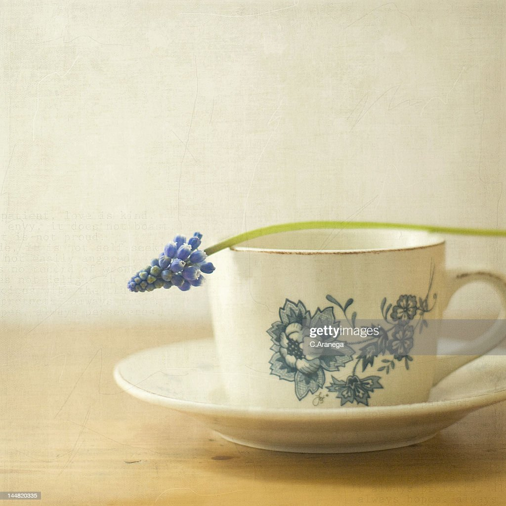 Tea cup with purple flower : Stock Photo