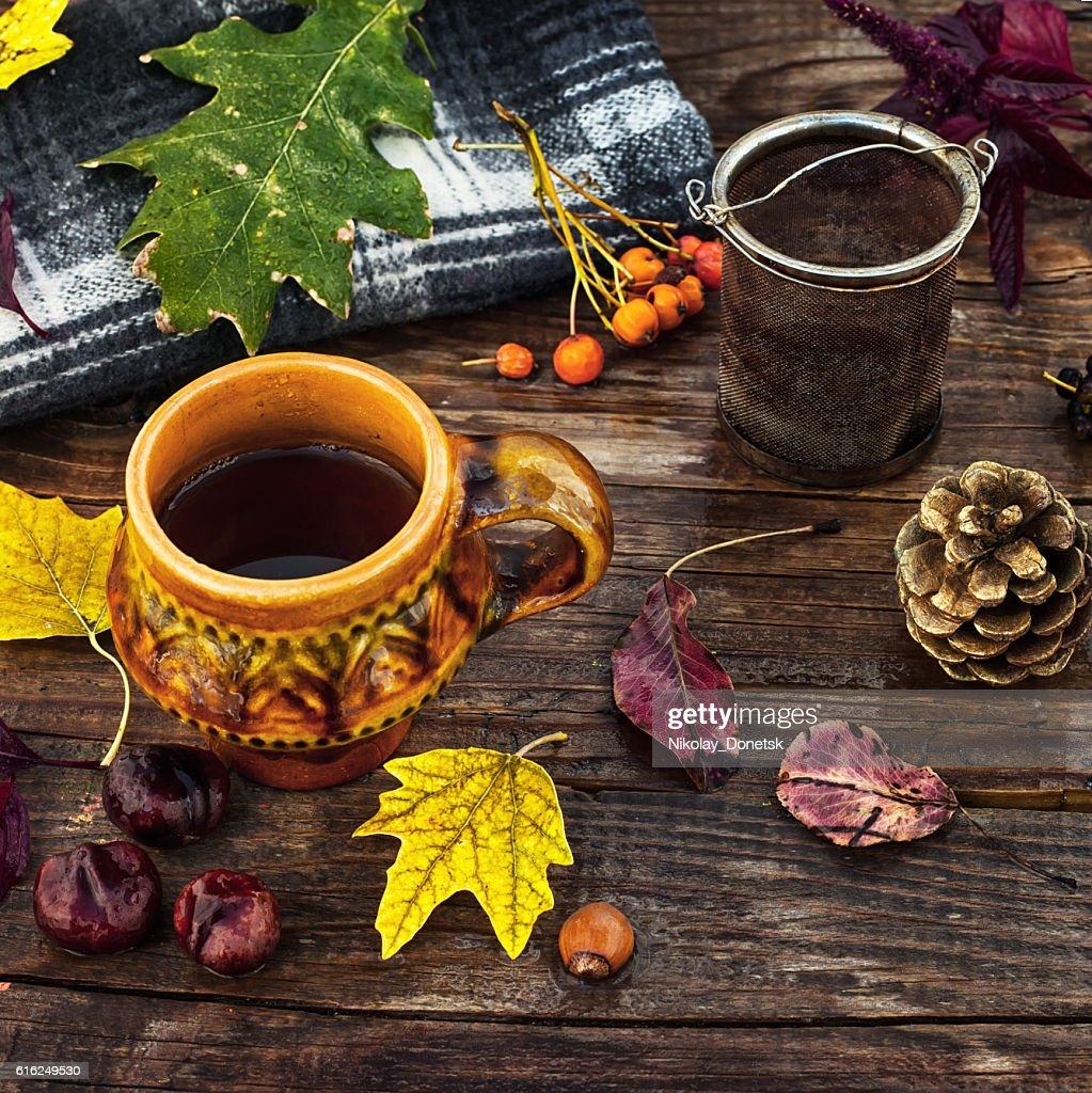 Tea party in October : Foto de stock