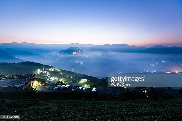 Tea plantations under star sky