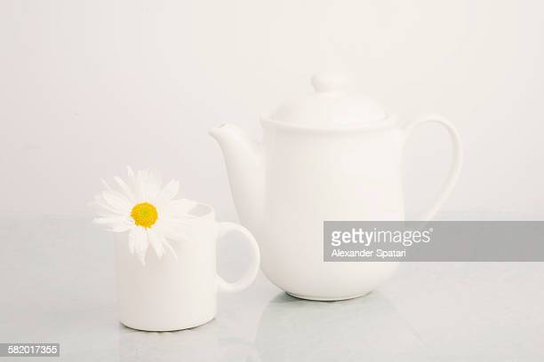 Tea set with camomile flower on white background