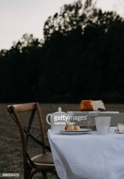 Tea time table at sunset in a field