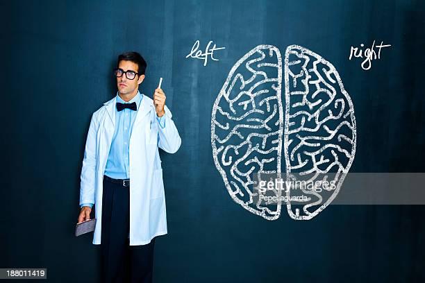 Teacher explaining human brain