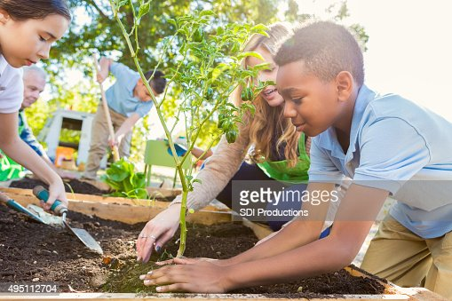 Teacher instrucing students while gardening during science class