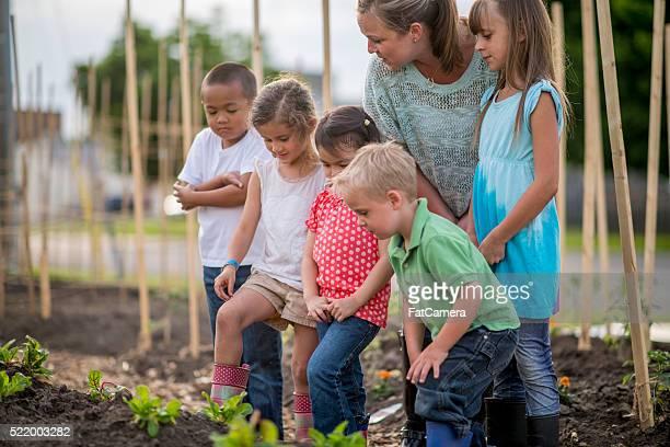 Teacher Showing Children How to Garden