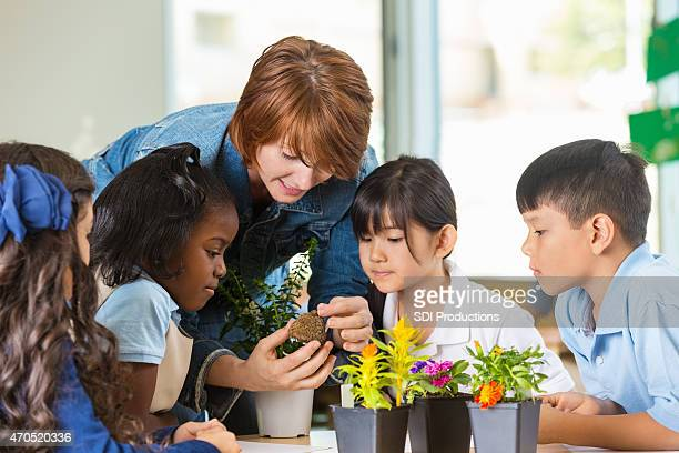 Teacher using plants to teach science class in private school