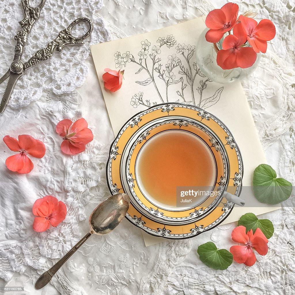 Teacup, geranium flowers, scissors and floral sketch : Stock Photo