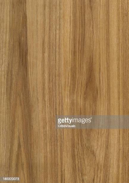 Teak tree stock photos and pictures getty images