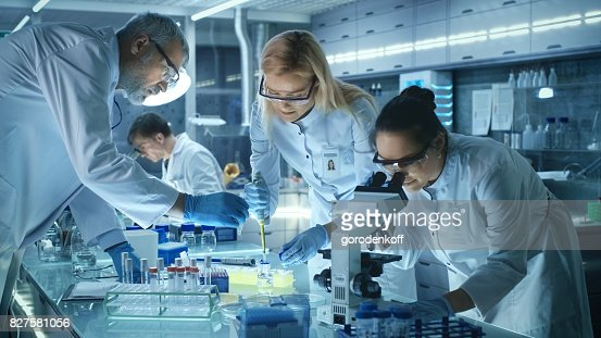 Team of Medical Research Scientists Work on a New Generation Disease Cure. They use Microscope, Test Tubes, Micropipette and Writing Down Analysis Results. Laboratory Looks Busy, Bright and Modern. : Foto de stock
