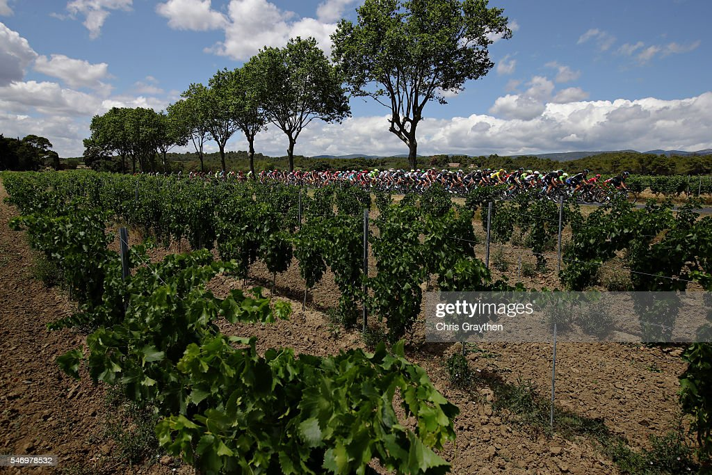 Team Sky including Chris Froome of Great Britain riding for Team Sky in the yellow leaders jersey lead the peloton on stage eleven of the 2016 Le Tour de France, a 162.5 km stage from Carcassone to Montpellier on July 13, 2016 in Montpellier, France.