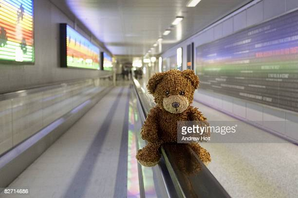 Tebby bear in airport with coloured background