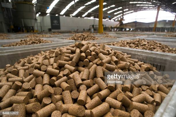 Technical cork stoppers made from granules of waste cork sit in storage bins at the Amorim Irmaos SA factory operated by Corticeira Amorim SGPS SA in...