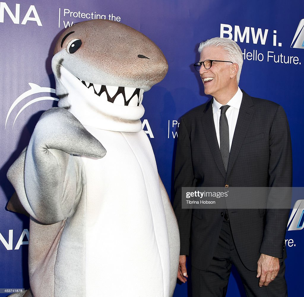 Ted Danson attends the 7th annual Oceana's SeaChange summer party on August 16 2014 in Laguna Beach California
