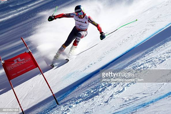 Ted Ligety of the USA wins the gold medal during the FIS Alpine World Ski Championships Men's Giant Slalom on February 13 2015 in Beaver Creek...