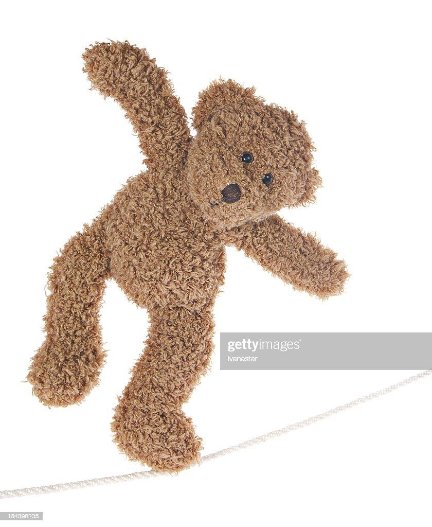 Teddy Bear Balancing on Rope