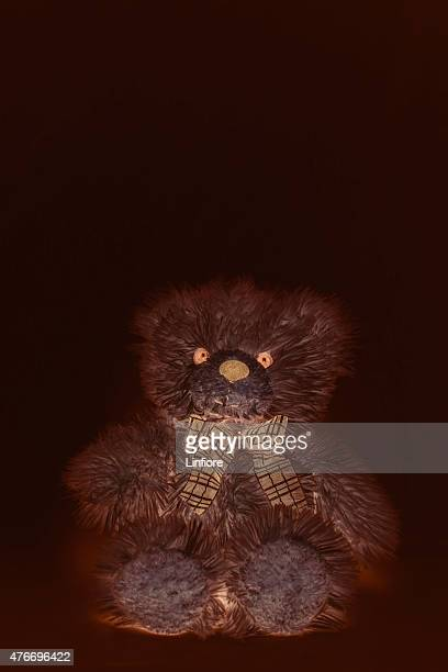Teddy Bear in Brown