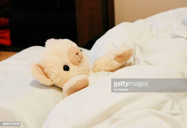 Teddy bear in the bed
