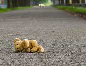 Teddy bear lies on the road