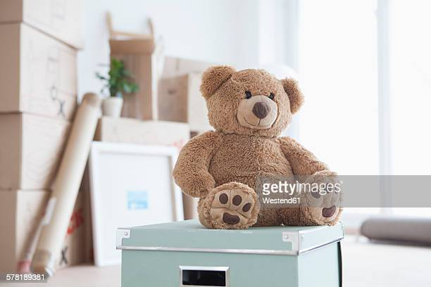 Teddy bear sitting on box in front of piled cardboard boxes