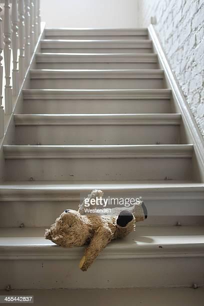 Teddybear on steps