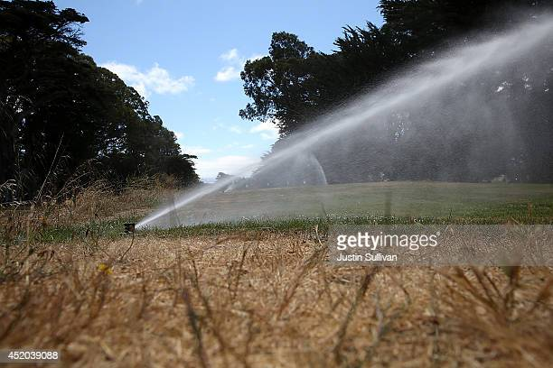 A tee box is watered by a sprinker at Gleneagles Golf Course on July 11 2014 in San Francisco California As the severe drought in California...