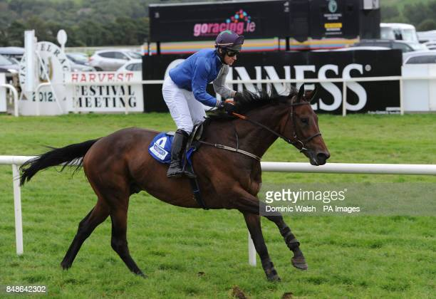 Teelin Star ridden by CJ Sweeney wins the McElligotts Tralee Ltd Mercedes Benz at Listowel Racecourse