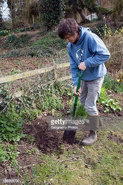 Teenage boy digging hole in garden