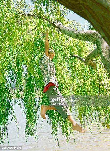Teenage boy (12-14) hanging from branch of tree by lake, portrait