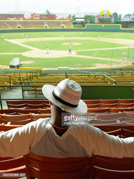 Teenage boy (15-17) watching baseball game, rear view