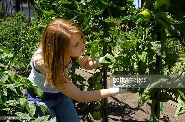 Teenage Caucasian Girl Working in Her Vegetable Garden