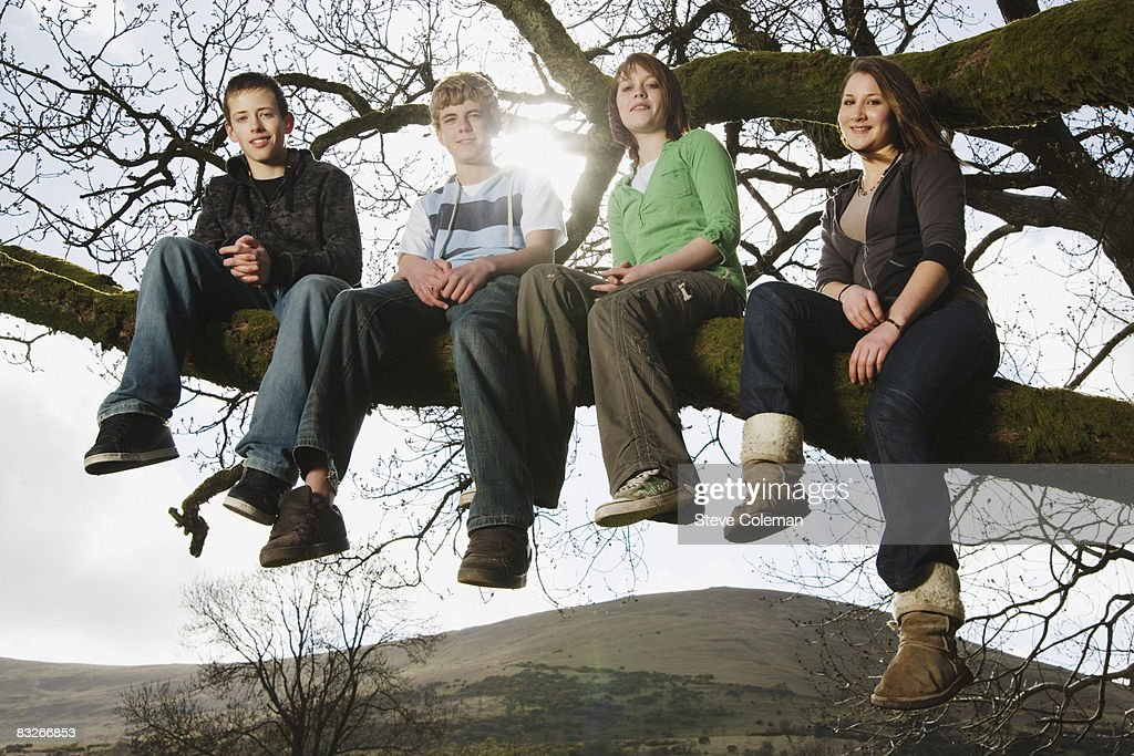 Teenage friends sitting on tree branches : Stock Photo