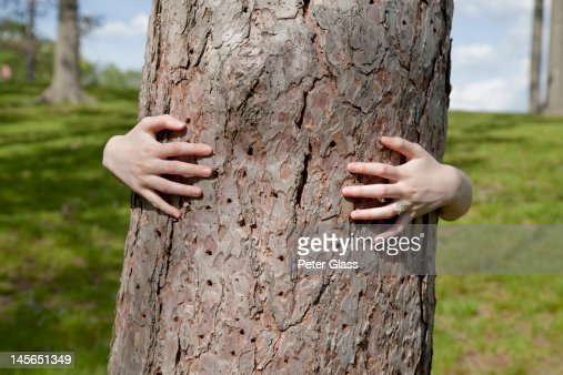 Teenage girl at a park, behind a tree. : Stock Photo