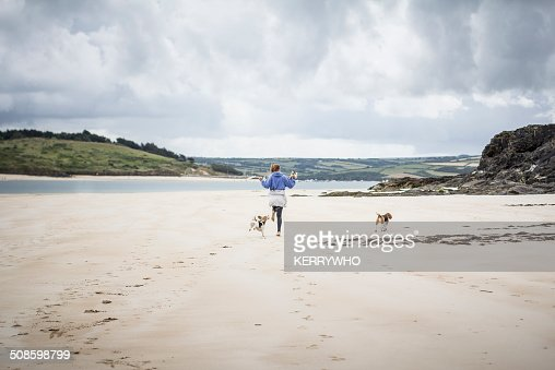 Teenage girl on the beach with dogs : Foto de stock