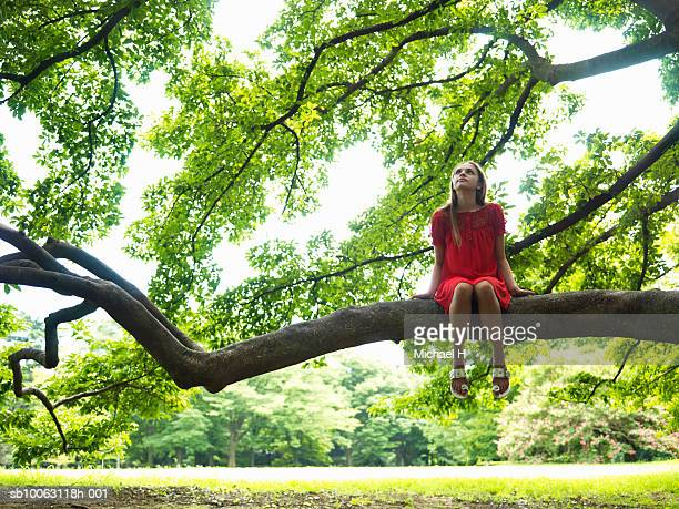 Teenage girl (16-18) sitting on tree branch
