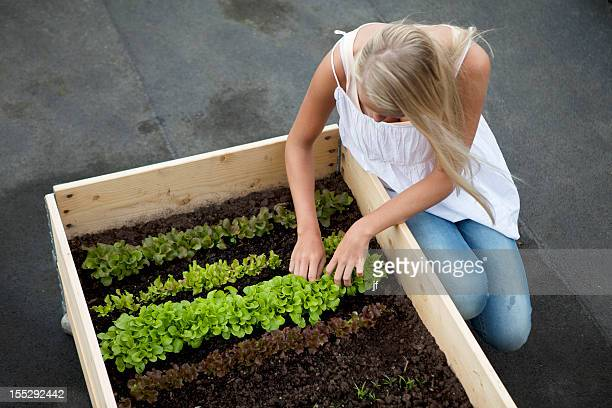 Teenage girl working in plant box