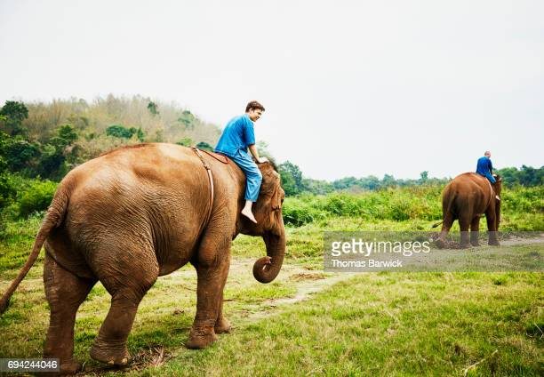 Teenage son and father riding Asian elephants in Chiang Rai Thailand