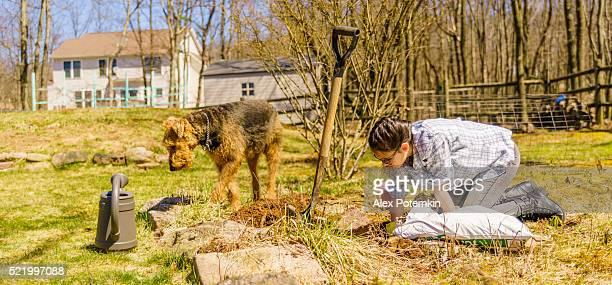 Adolescente ragazza e cane giardinaggio sul cortile all'inizio della primavera